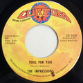 Fool For You / I'm Loving Nothing