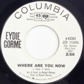 Where Are You Now / Where Are You Now