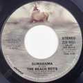 Sumahama / It's A Beautiful Day